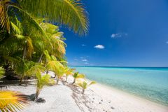 Stunning tropical beach Stock Photography