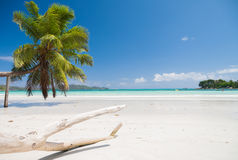 Stunning Tropical Beach Stock Images