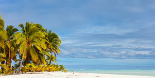 Stunning tropical beach at exotic island in Pacific Stock Photography