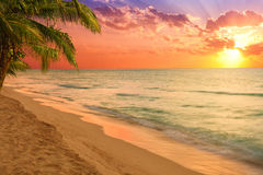 Stunning tropical beach at sunrise Royalty Free Stock Photo