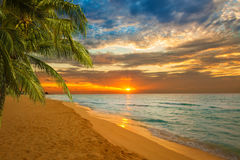 Stunning tropical beach at sunrise Stock Photography
