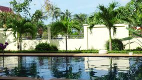 A stunning tropical resort with a swimming pool drowning in greenery and frangipani flowers. Koh Samui. 3840x2160 stock footage