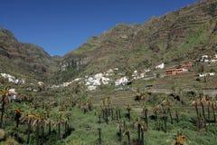 Stunning Valle Gran Rey Stock Image