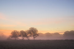 Stunning vibrant Autumn foggy sunrise English countryside landsc Stock Photography