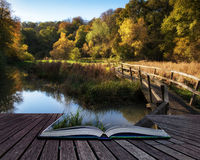 Stunning vibrant Autumn landscape of footbridge over lake in for Royalty Free Stock Photo