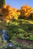 Stunning vibrant Autumn landscape of waterfall Stock Image