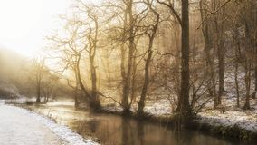 Stunning vibrant golden glow sunrise over landscape of stream in Winter forest with snow on gorund. Stunning golden glow sunrise over landscape of stream in royalty free stock image