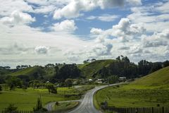 Stunning and vibrant landscape. Road trip trough rolling green hills. Stunning and vibrant New Zealand  landscape. Road trip trough rolling green hills Stock Photos