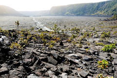 Stunning view of the Kilauea Iki volcano crater surface with crumbling lava rock in Volcanoes National Park in Big Island of Hawai Stock Photos