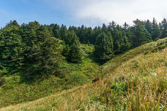 Stunning view of the pacific northwest coastline from Cape Disappointment state park Washington USA. Royalty Free Stock Photos