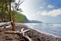 Stunning view of rocky beach of Pololu Valley on Big Island of Hawaii. USA Royalty Free Stock Photography