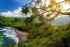 Stunning view of rocky beach of Pololu Valley, Big Island, Hawaii, taken from Pololu trail. Stunning view of rocky beach of Pololu Valley, Big Island, Hawaii Stock Images