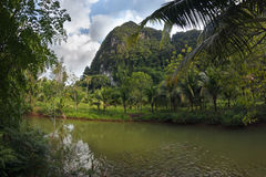 Stunning view to the karst formation hills, river with fish and. Tropical greenery Royalty Free Stock Photos