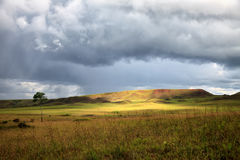 Stunning view to savanna under stormy cloudy sky Stock Photography