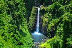 Stunning view of wild jungle waterfall with pristine water, Sopo stock photo