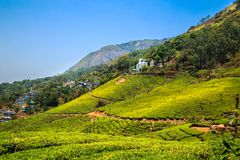 Stunning views of green hills with blue sky. Tea plantations in Munnar, Kerala, India. Stunning views of green hills with blue sky Royalty Free Stock Images