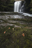 Stunning watefall landscape in cross over between Autumn and Win Stock Images
