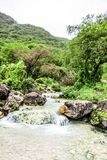 Waterfall in Ayn Khor  and Lush green landscape, trees and foggy mountains at tourist resort, Salalah, Oman. Stunning Waterfall in Ayn Khor  and Lush green stock photos