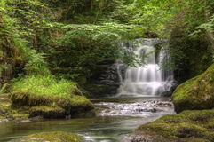Stunning waterfall flowing over rocks in forest