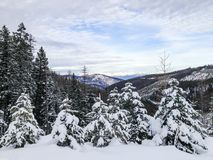 Stunning winter landscape of deep snow, trees and mountains royalty free stock photography