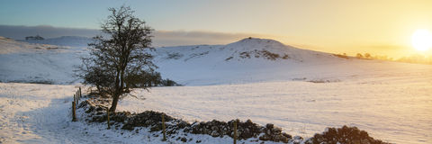 Stunning Winter panoramic landscape snow covered countryside wit Royalty Free Stock Photo