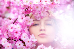 Free Stunning Young Blonde In Bright Pink Flowers Royalty Free Stock Photo - 53349705