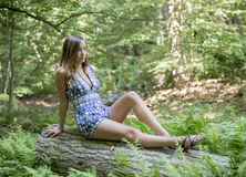 Stunning young woman poses in woods Stock Images