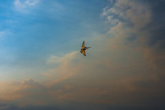 Stunt plane in the sky. Stunt plane flying on a clouded blue sky Royalty Free Stock Photography