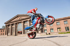 Stunt rider making wheelie. While standing on gas tank Royalty Free Stock Images