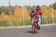 Stunt rider making wheelie royalty free stock photography