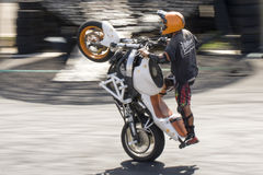 Show Motorbike Upright Stuntman Stock Images