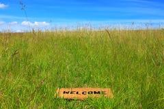 Stuoia benvenuta in un prato dell'erba con cielo blu Immagini Stock Libere da Diritti