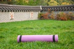 Stuoia di yoga sull'erba in giardino asiatico Immagini Stock Libere da Diritti
