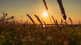 Stupéfaction égalisant le panorama du coucher du soleil dans le domaine images libres de droits