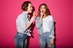 Stupéfier deux amis de femmes mangeant la crème glacée  Photos stock