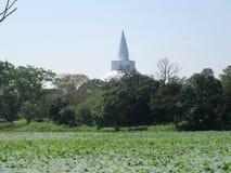 Stupa σε Anuradhapura στη Σρι Λάνκα Στοκ φωτογραφία με δικαίωμα ελεύθερης χρήσης