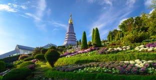 stupa гор середины inthanon пущ doi красотки Chiang Mai, Таиланд Стоковое фото RF