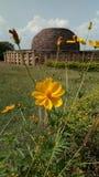 Stupa стоковое изображение