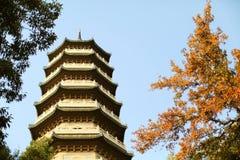 Stupa Stockfoto