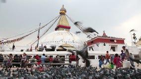 Stupa Bodnath в Катманду сток-видео