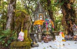 Stupa bouddhiste sur le dessus de la montagne de Doi Inthanon, Thaïlande Photos stock