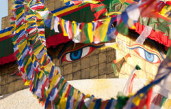 Stupa Boudhanath Стоковое Фото