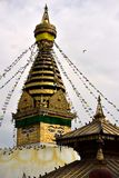 Stupa Boudhanath 库存图片