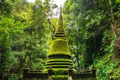 Stupa (Chedi) in het bos Royalty-vrije Stock Fotografie