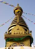 stupa dłoni Obraz Royalty Free
