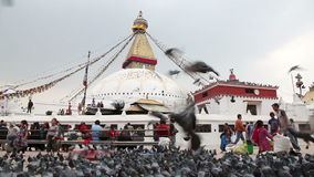 Stupa de Bodnath em Kathmandu video estoque