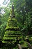 Stupa del muschio Fotografie Stock Libere da Diritti