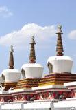 Stupa del Tibet Fotografia Stock