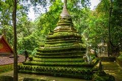 Stupa do templo de Wat Palad, Chiang Mai, Tail?ndia fotografia de stock