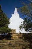 stupa för sri för anuradhapuralankamirisavetiya Arkivfoto